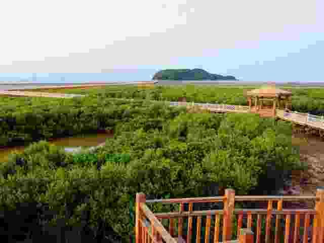 阳江海陵岛渔家乐观光游船, 马尾岛,牛塘山,十里银滩,红树林三天品质