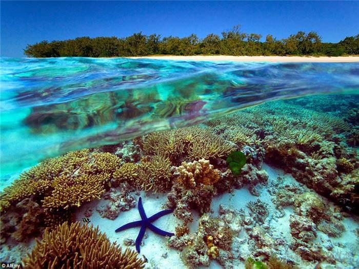 澳洲墨尔本大堡礁8天游(6晚)