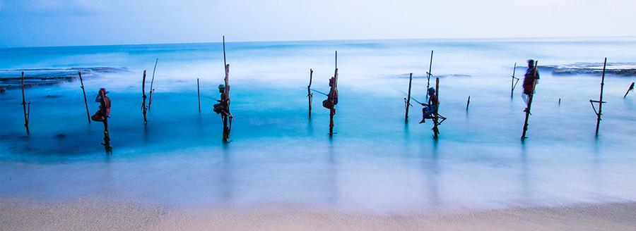 斯里兰卡4天3晚精华游