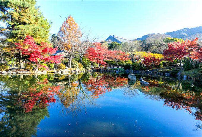 日本本州东京、富士山、大阪温泉六天五晚半自助和风之旅