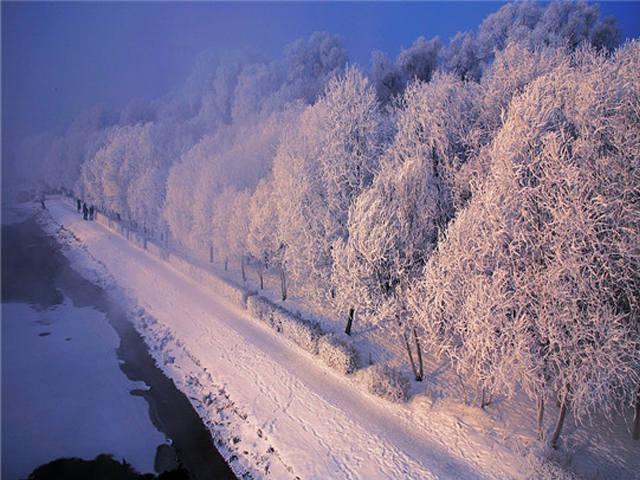 遇见东北*哈尔滨、童话雪乡、亚布力滑雪、雪地温泉五日奢华游