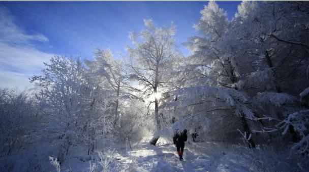 【内蒙古】呼伦贝尔大雪原、东山滑雪场、莫日格勒河、根河湿地、中国冷极村、敖鲁古雅驯鹿部落、中俄边境满洲里、套娃景区双飞五日游