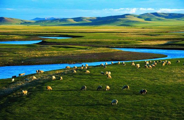 呼伦贝尔大草原、额尔古纳湿地、中俄边境满洲里、东方巴黎哈尔滨四飞六日游