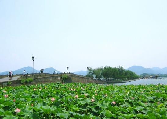 华东三市、姑苏评弹、夜宿乌镇漫游、水乡 南浔、船游西湖、四天双飞精选纯玩团
