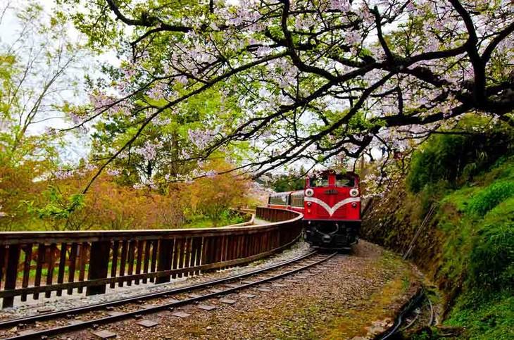 台湾半岛悠游五天之旅【纯玩】