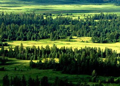 内蒙古乌兰布统草原,达里诺尔湖,白音敖包沙地云杉林、阿斯哈图石阵,巴林沙漠公园,召庙双飞六日游