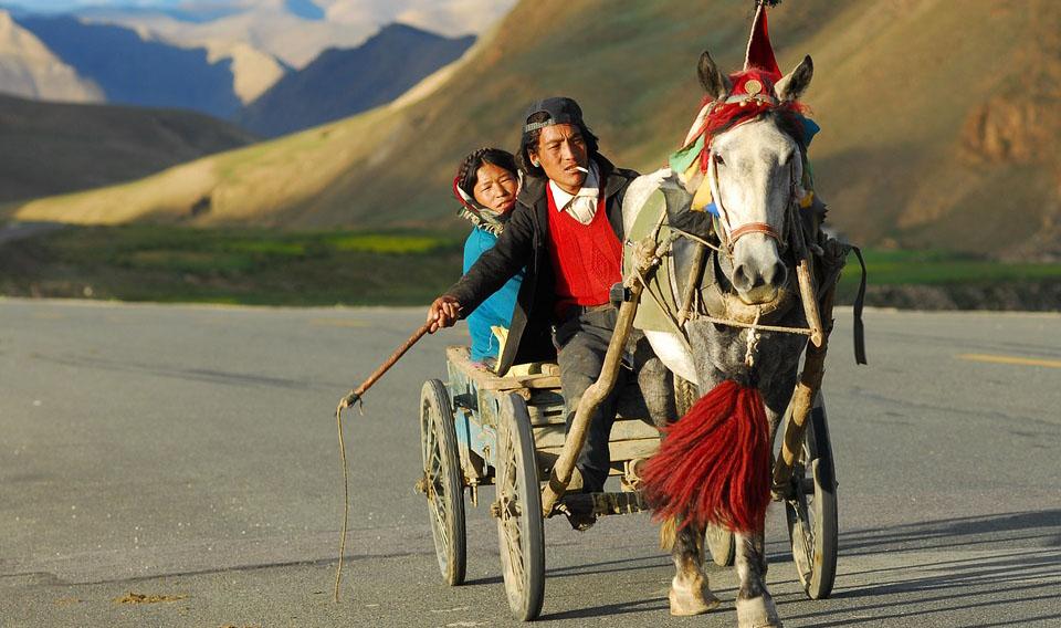 探秘西藏,藏家生活体验9天美食之旅-林芝进拉萨出