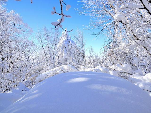 【奢享雪乡】哈尔滨冰雪大世界、亚布力俄罗斯家访、雪龙峰登顶、大雪谷、中国雪乡深度漫游6日团