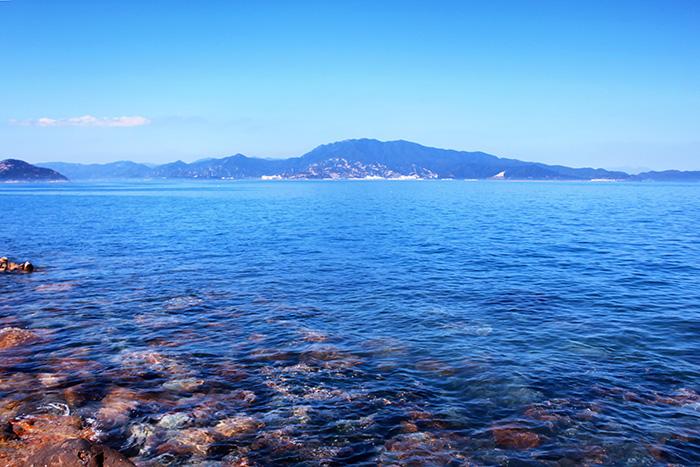 【游艇观光】  东部航线游船+杨梅坑徒步+较场尾风情海湾+海鲜午餐一日游