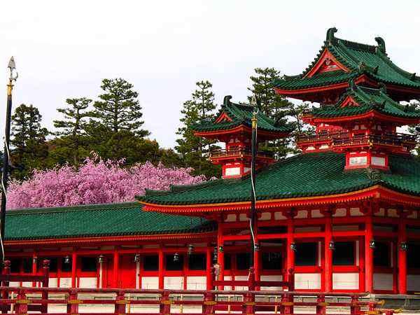 日本本州北海道美食温泉7天游